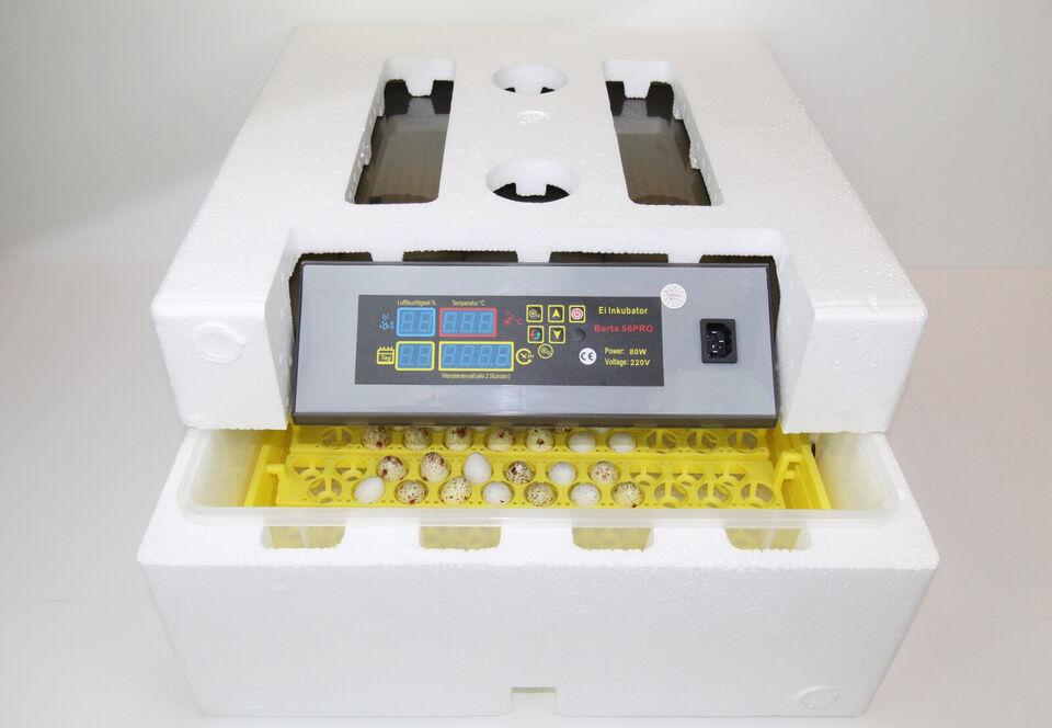 Fuldautomatisk Rugemaskine