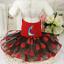 Pet-Small-Dog-Cat-Clothes-Puppy-Cotton-Lace-Tutu-Skirt-Apparel-Princess-Dress thumbnail 45