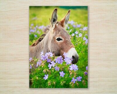 Blank Greeting Card by Artist Jo Grundy Cards /'Through The Flower Meadow/'
