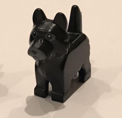 1x Noir LEGO Chien Terrier avec yeux noirs /& Nez sur fond gris motif NEUF