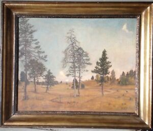 Fir-clearing-Indistinctly-Signed-Oil-Painting-1948-Erzgebirge-who-knows-more