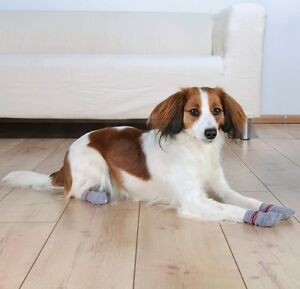 Details About Injured Dog Paw Paws Non Slip Socks Heal Wound Stop Slipping Wooden Floors Boot