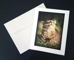 034-Sunshine-Purrfection-034-Cat-Lover-Notecard-with-Envelope