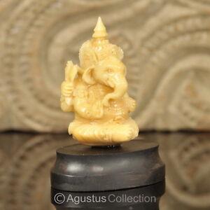 """Hindu God GANESHA Carving TAGUA NUT Marvelous Carved Art Sculpture STATUE 1.73"""""""
