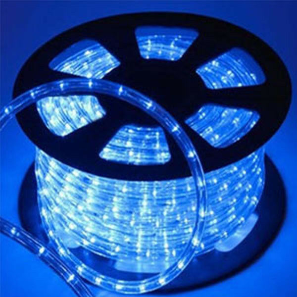 50 metri Corda luminosa 2 vie led 12V BLU