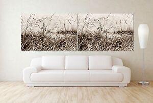 xxl-panorama-leinwand-205x70-ERA-natura-immagine-seppia-QUADRO-LOUNGE-IKEA