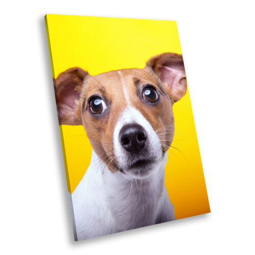 Jack Russell Dog Yellow  Portrait Animal Canvas Wall Art Large Picture Prints