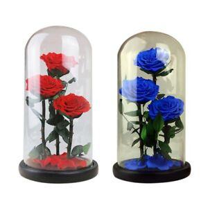 ewige blumen getrocknete blumen konservierte frische blumen live rose glas v3f4 ebay. Black Bedroom Furniture Sets. Home Design Ideas
