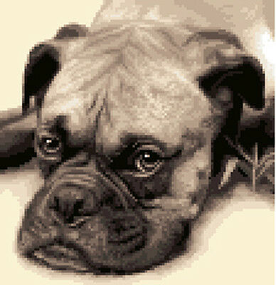 BOXER DOG -  complete counted cross stitch kit * All materials included