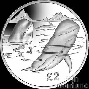 2017-PILOT-WHALE-CuNi-Copper-Nickel-UNC-Coin-South-Georgia-Sandwich-Islands