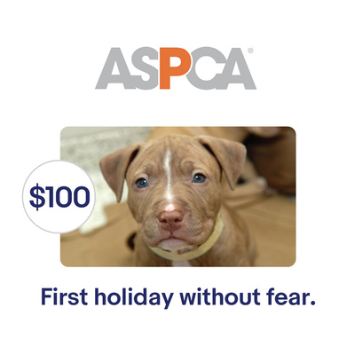 ASPCA $100 Their First Holiday Without Fear Symbolic Charitable Donation