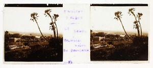 Il-Sahel-Dintorni-Algeri-Algeria-Foto-Placca-Da-Lente-Stereo-Avril-1903