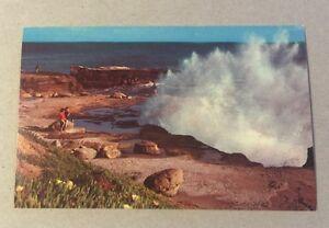 West-Cliff-Drive-SANTA-CRUZ-CA-vintage-unused-chrome-postcard-Monterey-Bay-area