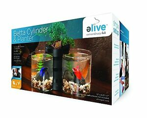 Elive Betta Cylinder & Planter Black