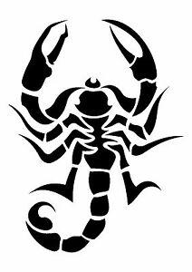 Tribal-Scorpion-Stencil-350-micron-Mylar-not-thin-stuff-TaT0105