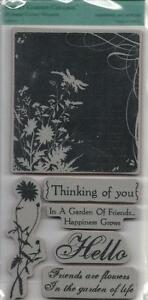 TPC-Studio-Rubber-Cling-Stamps-SECRET-GARDEN-COLLAGE-Thinking-of-You-Friends