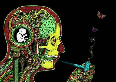 Inner System of Weed in Mind A3 Poster A367