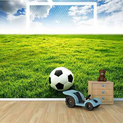 Green Field Balls Football Soccer Wall Mural Photo Wallpaper GIANT WALL DECOR