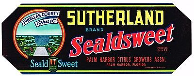 CRATE LABEL VINTAGE FLORIDA 1930S STRIP PALM HARBOR PINELLAS COUNTY SUTHERLAND