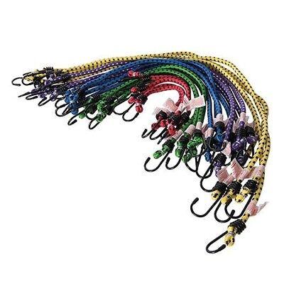Lot De 20 Tendeurs Sandows Cordon élastique Extensible Crochet Métal 250 A 750 M Design Professionale