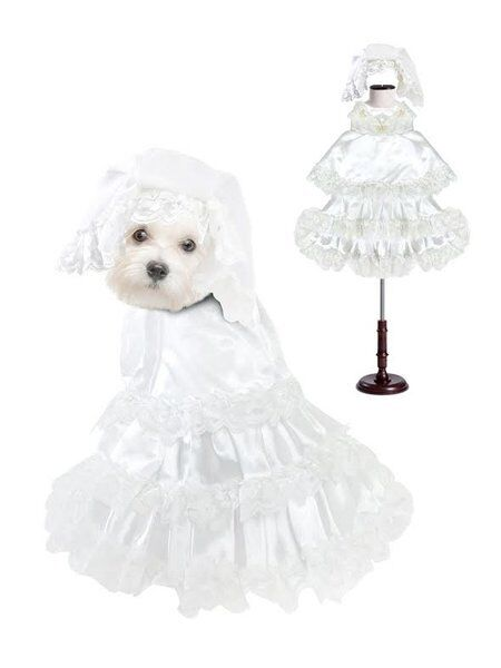 High Quality Dog Costume White WEDDING DRESS COSTUMES Dress Your Dogs As Brides