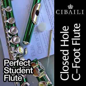 GREEN-and-SILVER-C-foot-Flute-BRAND-NEW-Case-Perfect-For-School-Student