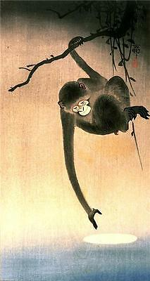 8 Pictures Japanese Woodblock Giclee Prints Birds Monkey Egrets Ducks Gold Fish