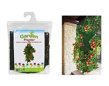 Garden FIORIERA appesa FIORIERA IDEALE PER FIORI ERBE & strawberries-am5880