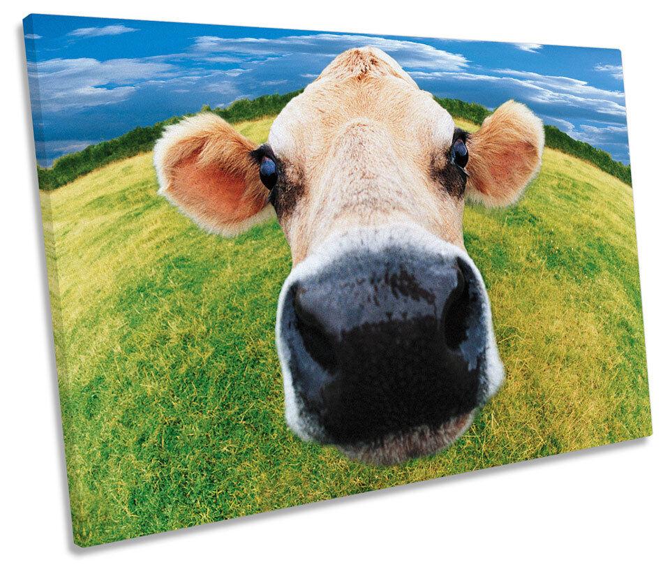 Cow Funky Face Farm SINGLE CANVAS WALL ART Box Framed