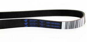 c00074218-Original-Cinturon-1046h8el-amp-1051-H8-MAEL