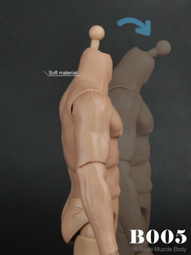 ❶❶1//6 MUSCULAR FIGURE BODY Narrow Shoulder Hot Toys TTM19 Hitfigure US seller❶❶