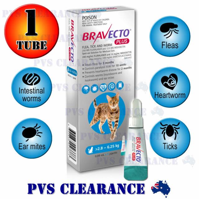 Bravecto Plus Spot On for Medium Cats - Blue 2.8-6.25 kg - Heartworm Cat