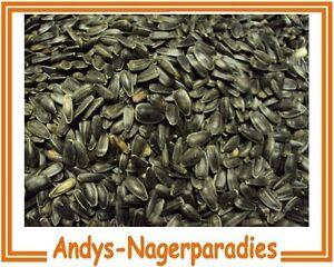 25kg-Sonnenblumenkerne-schwarz-Streufutter-Wildvogelfutter-Vogelfutter-Ernte2019