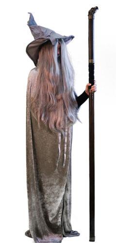 Harry Potter-World Book Day-Hogwarts-Hermione-Dumbledore GANDALF COSTUME 1 SIZE
