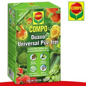 COMPO 150ml Duaxo Universal Pilz-frei für circa 500 m² Mehltau Pflanzen Schutz