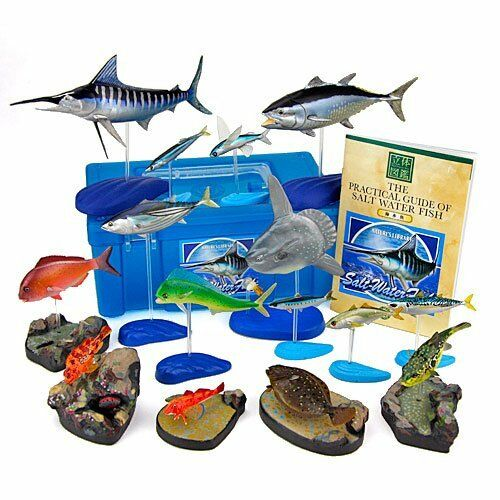 Nuevo colorata Real Figura Juego Caja 15 Pcs Agua Salada Fish PVC desde Japón F