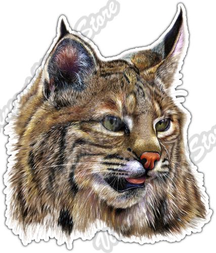 Cat Face Car Bumper Sticker Decal 4/'/' x 5/'/'