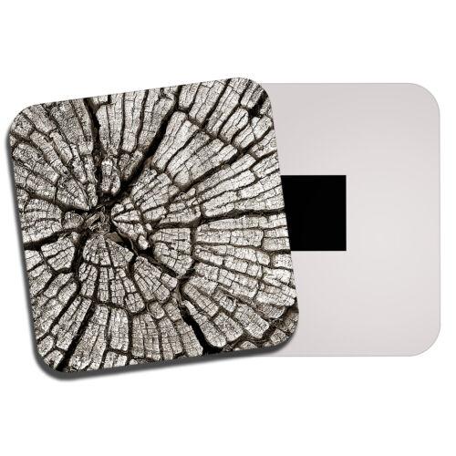 Cool Tree Bark Fridge Magnet Nature Forest Stump Forestry Men/'s Gift #14147