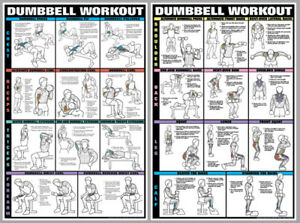 Image Is Loading Dumbbell Workout Dumbells Free Weights Pro Fitness Wall