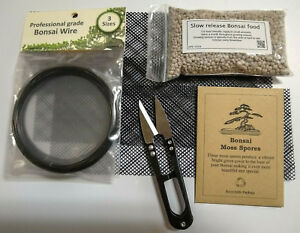 Bonsai-Arbre-Kit-de-maintenance-Ciseaux-nourriture-maille-fil-Moss-spores