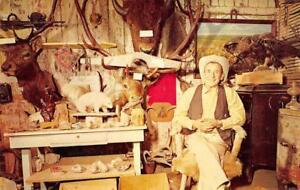 ROBBER-039-S-ROOST-Vigilante-Trail-Cowboy-Virginia-City-MT-1964-Vintage-Postcard