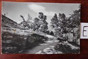 Carte Postale Vue Carte Bavière Riffelglas Avec Matterhorn-afficher Le Titre D'origine