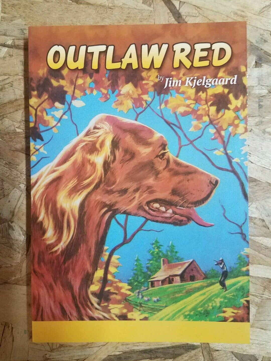 a summary of the novel big red by jim kjelgaard Born in new york city, new york, jim kjelgaard is the author of more than forty novels, the most famous of which is 1945's big redit sold 225,000 copies by 1956 and was made into a 1962 walt disney film of the same name.