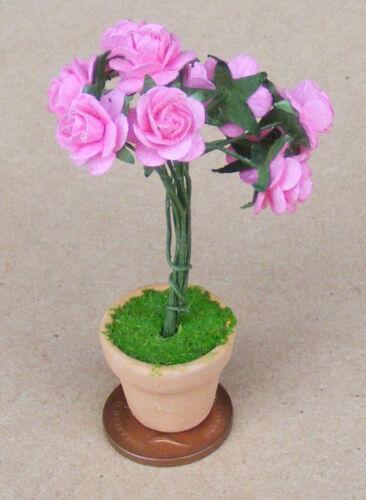 Escala 1:12 rosas rosa de papel en Una Maceta De Terracota tumdee Accesorio de casa de muñecas