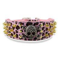 """Gold Spiked Skull PU Leather Dog Collars Studded Collar for Pit bull  2"""" Wide"""