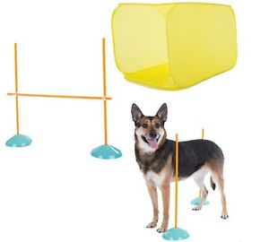 Indoor Agility Kit 7 Piece Set for Dogs - Exercise - interactive fun