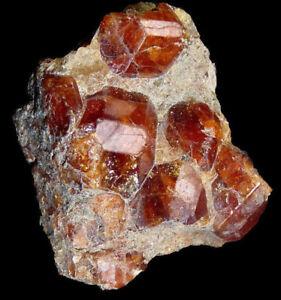 Granate-Garnet-Avila-Espana-Spain-Mineral-Mineraux-Mineralien-C9