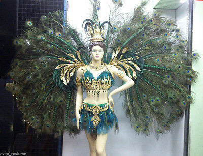 Da NeeNa C020 Show Vegas feather Peacock Wings Backpiece Costume set XS-XL