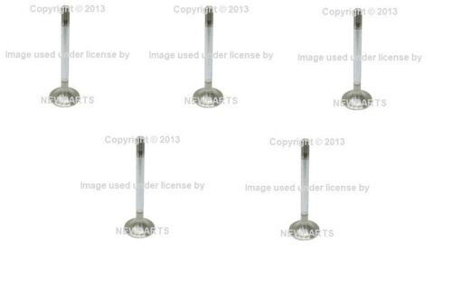 For Mercedes W116 W123 W126 INTERVALVES Intake Valve 10 mm Shaft Diameter Set 5