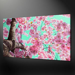 Image Is Loading CHERRY BLOSSOM CANVAS PRINT PICTURE WALL ART VARIETY